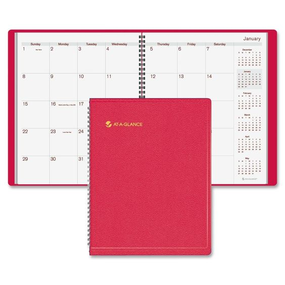 Monthly Appointment Book