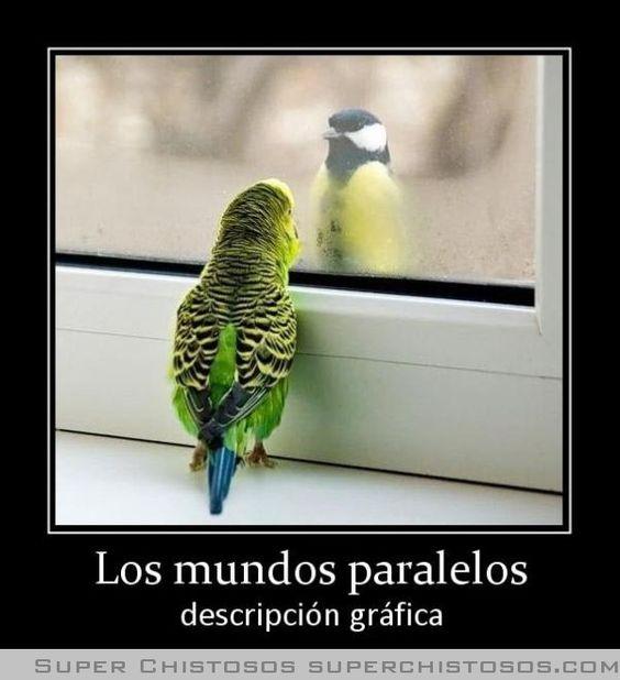 Los Mundos Paralelos: