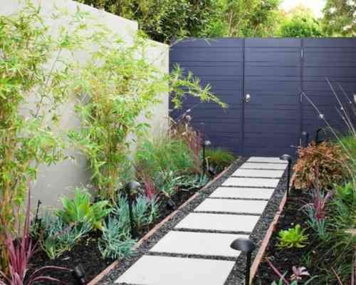 planter des bambous à côté de la clôture