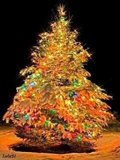 Que as realizações alcançadas este ano, sejam apenas sementes plantadas, que serão colhidas com maior sucesso no ano vindouro. Que o amor, a paz e a sabedoria, estejam em nossas vidas,durante o ano vindouro...Feliz Natal!