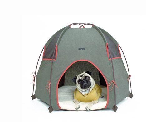 pug tent