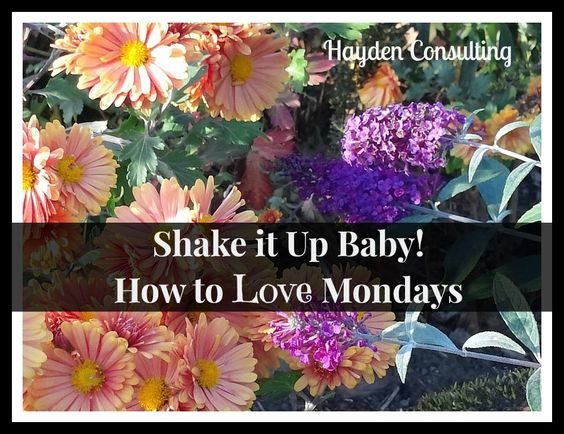 This is a must read if you hate Mondays or any other day of the week :) Hayden Consulting - Dental and Chiropractic Marketing