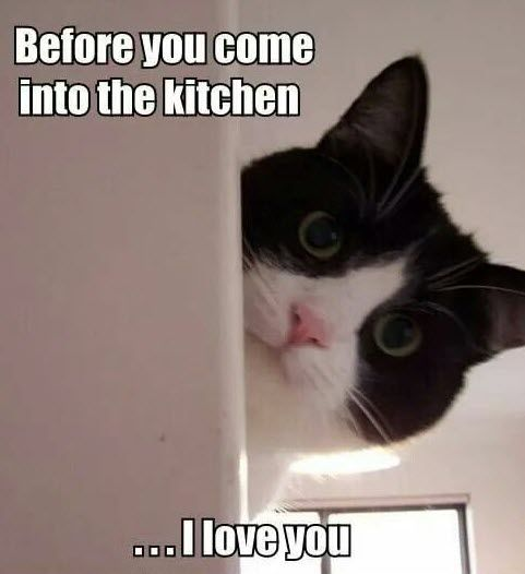 """Before you come into the kitchen . . . I love you."" 