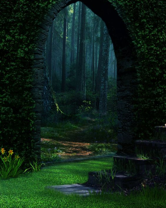 forest portal the enchanted wood photo via justlost. Black Bedroom Furniture Sets. Home Design Ideas