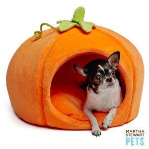 Martha Stewart Pets Pet Halloween Pumpkin Dog Bed