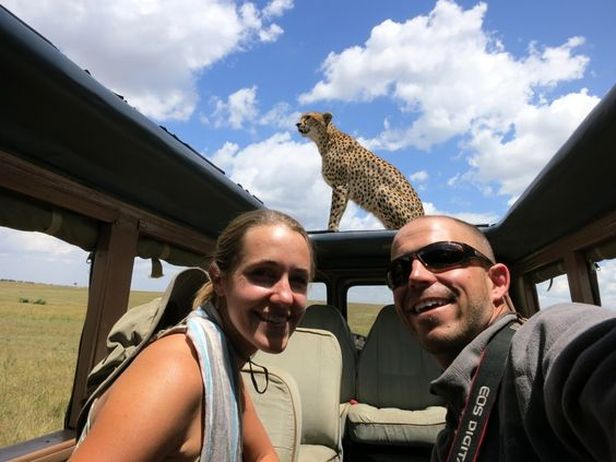 A cheetah searching for his next meal from the top of our roofless Land Rover! #10SecondsToLive