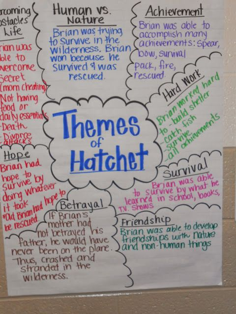 Hatchet theme essay example