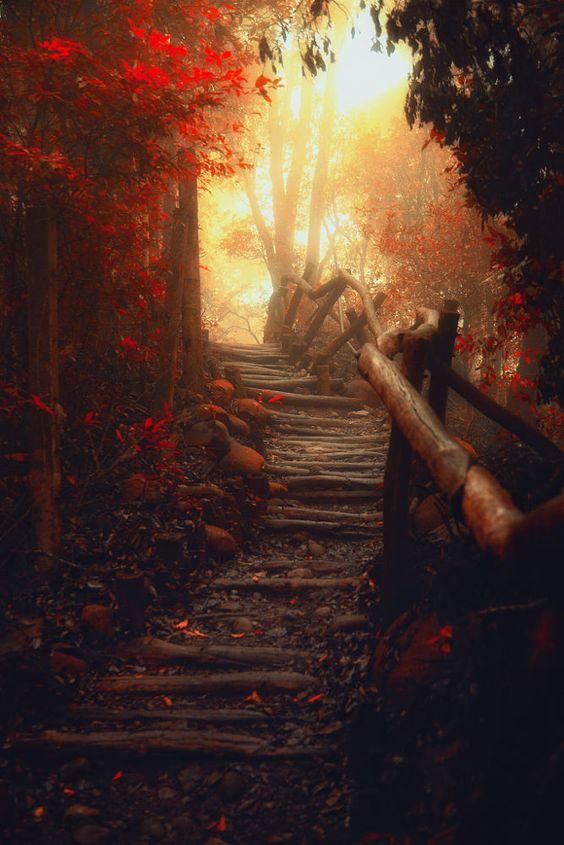 Hiking toward the light by Hanson Mao(毛延延) on 500px