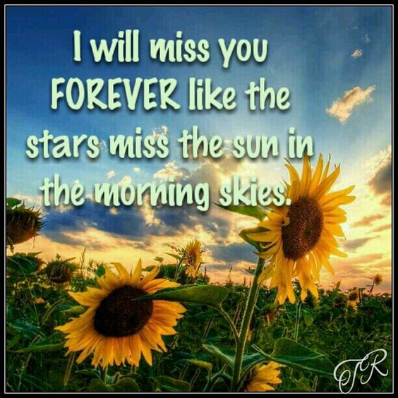 Sad I Miss You Quotes For Friends: I Will Miss You FOREVER Like The Stars Miss The Sun In The