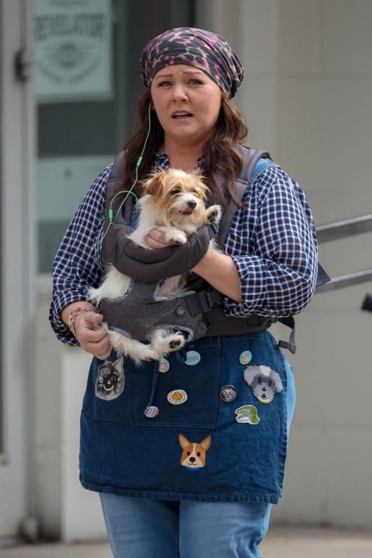Melissa Mccarthy Dog Celebs And Their Pets In 2018 Pets Pet Tags Cool Pets