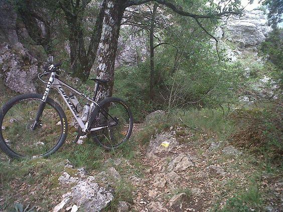 Wikiloc - Foto de Estella-Ollogoyen-Lokiz-Ollobarren-Belastegui-Estella http://es.wikiloc.com/wikiloc/imgServer.do?id=2576637