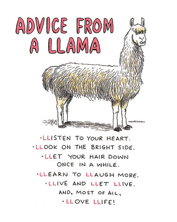 advice from a llama:)