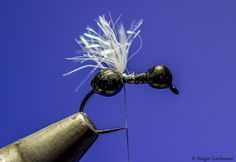 Winged Ant – by Holger Lachmann     Hatches Fly Tying Magazine