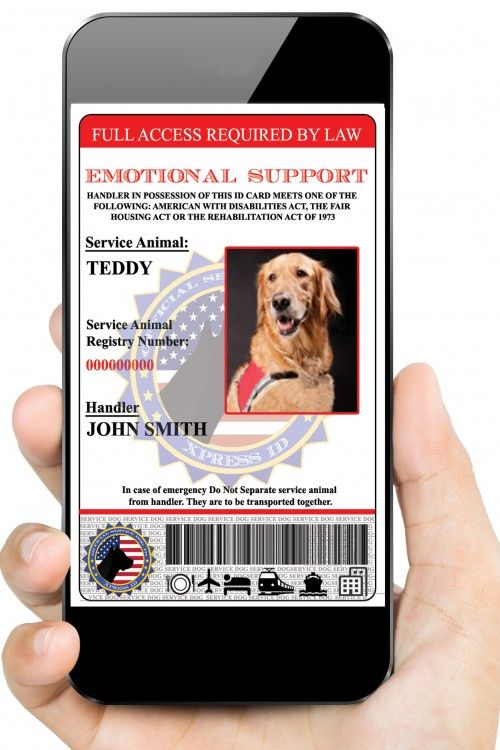 Digital Emotional Support Dog Id Emotional Support Dog Emotional Support Support Dog