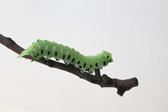 "Paper Caterpillar by Diana Beltran  #oruga #Papel #paper #DianaBeltran"" #hand #green #dots #colombia #Caterpillar:"