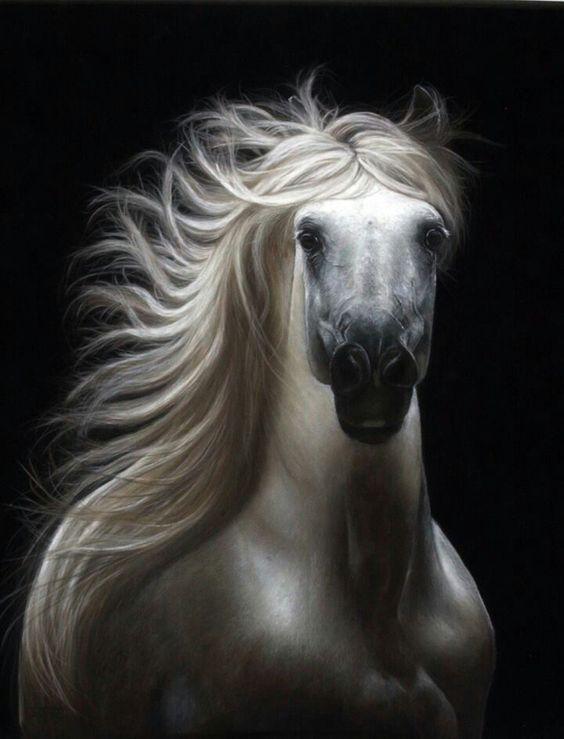 Spirit by Julie Olsen!