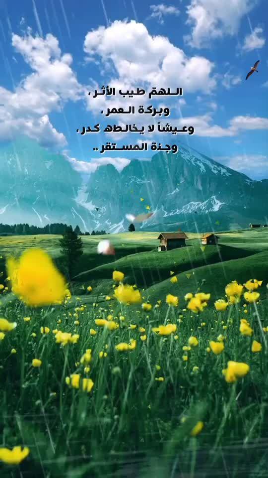 Pin Oleh Haven T All Di صباحات ومساءات وطاب يومكم وتهاني وتبريكات