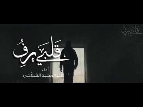 قلبي يرف كلمات أمل الشقير أداء عبدالمجيد الشلا ح ي Youtube