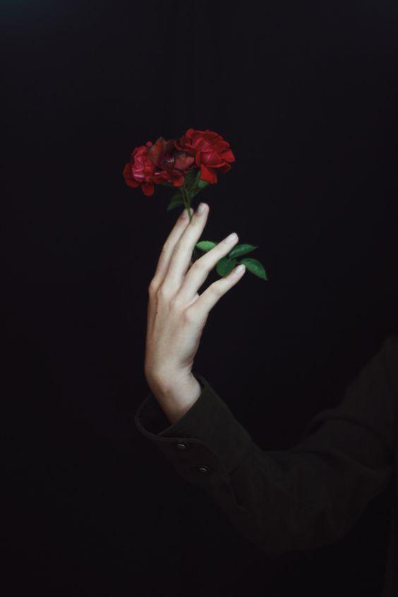 rose&prose