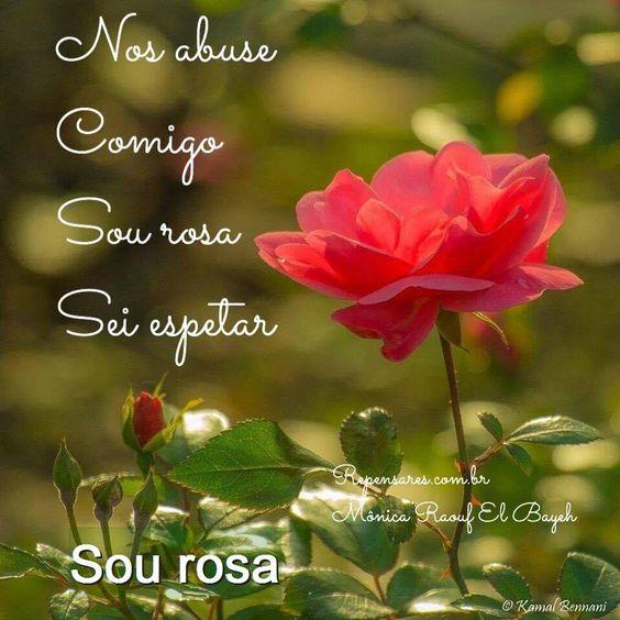 Clique na imagem para ler a poesia: Sou rosa