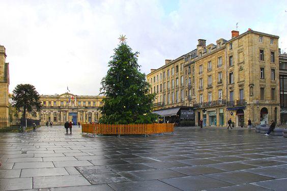 Новогоднее дерево на площади перед собором