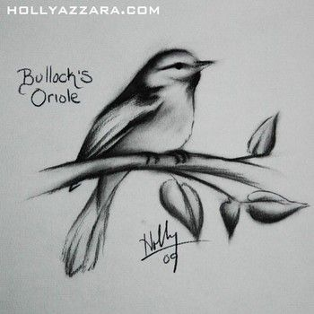 Holly Azzara - Birdy Charcoal | Tattoo Ideas | Pinterest | Art Charcoal And Sketches