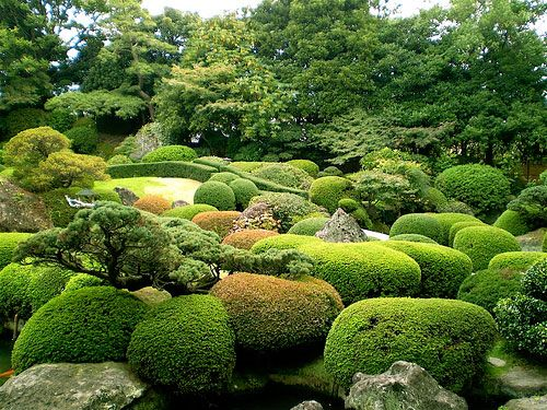 Japanese pruning topiary ueki no te ire all the for Japanese garden bushes