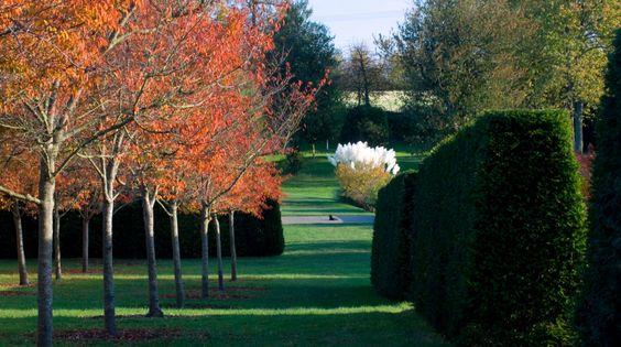 Marks Hall garden