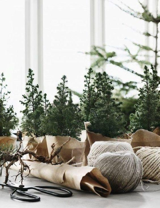 Mini Christmas trees wrapped in brown paper. From the lovely Norwegian home of Per Olav Sølvberg decorated for Christmas. Photography: Kristofer Johnsson / Residence