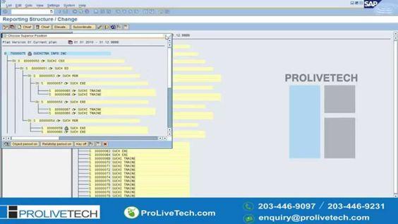 SAP HR Online Training SAP HR Video Tutorials - Part 1 SAP HR - sap hr payroll consultant resume