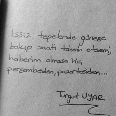 Issız tepelerde güneşe bakıp saati tahmin etsem; Haberim olmasa hiç perşembeden, pazartesiden… - Turgut Uyar: