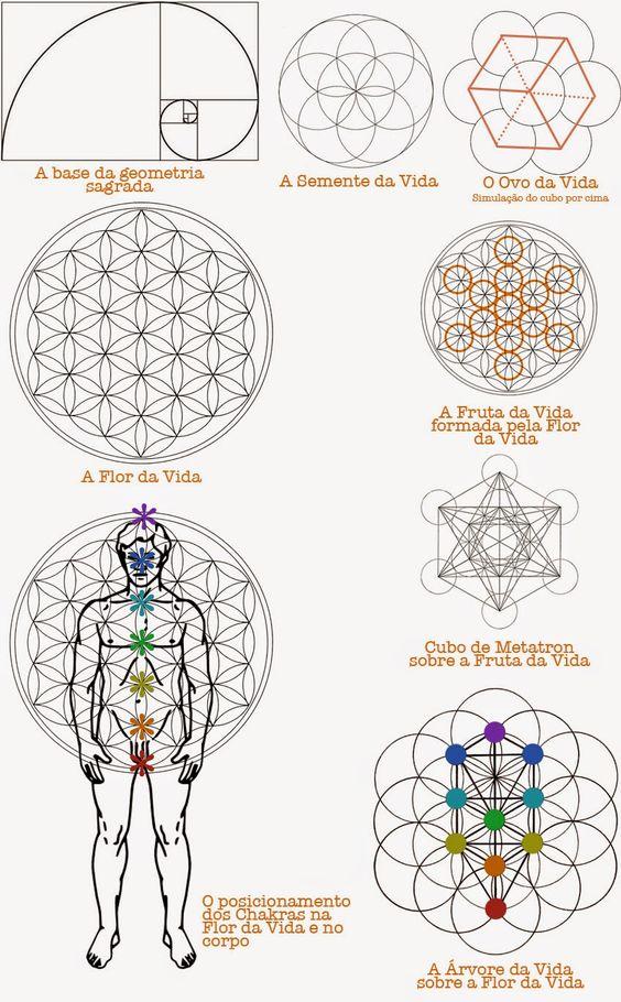 tree of life four worlds elements lighting manifestation - Pesquisa Google: