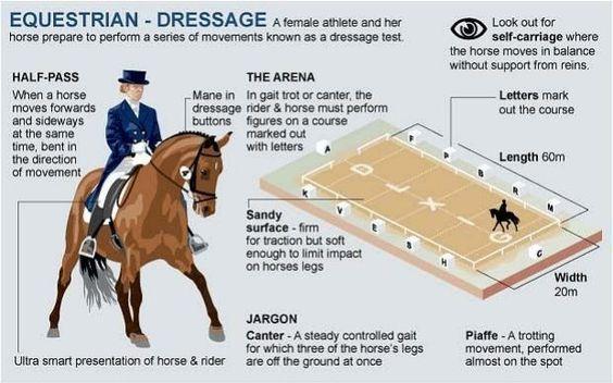 Rio 2016 Olympics: Equestrian guide