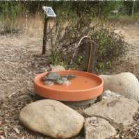 Build-your-own Solar Birdbath Jamie Gairdner Real Estate Ltd. Sales and Purchases of Town and Country Properties Erin Caledon Mono Amaranth ...