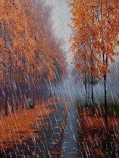 Imagini pentru rain autumn