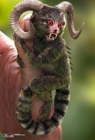 devil monkey hybrid