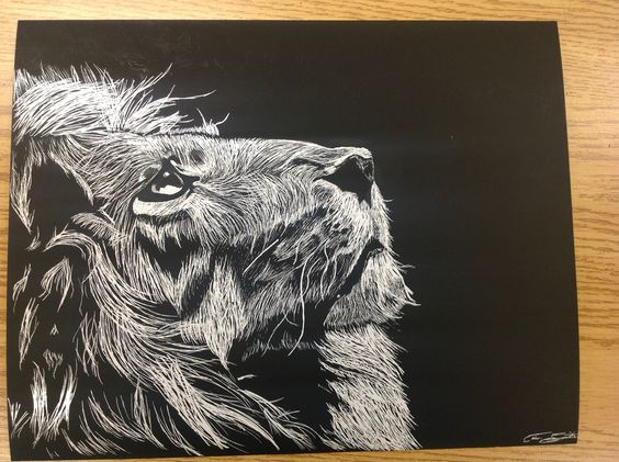 My looking lion done in scratch art. #scratchart #lion #myart #artist