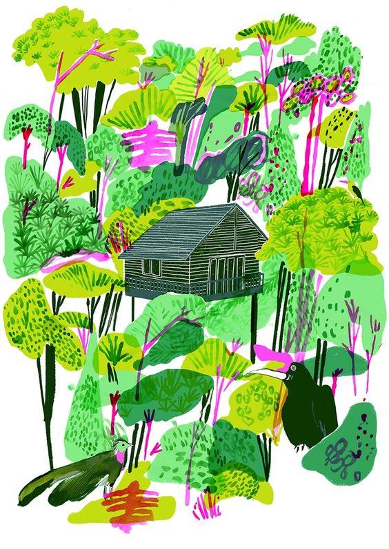 Image of Borneo Rainforest Print