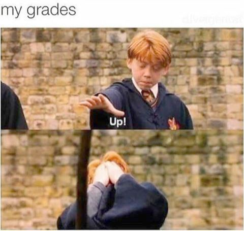 Harry Potter House Quiz Espanol In Harry Potter Interactive Wand Upon Harry Potter Memes Harr Harry Potter Jokes Harry Potter Puns Harry Potter Memes Hilarious