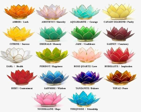 Lotus Lotus Flower Colors Lotus Flower Color Meaning Color Meanings