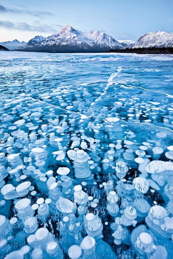 Gas bubbles trapped in the frozen waters of Abraham Lake, Alberta, Canada, photograph by Emmanuel Coupe