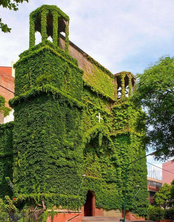 Resultado de imagen de iglesia verde