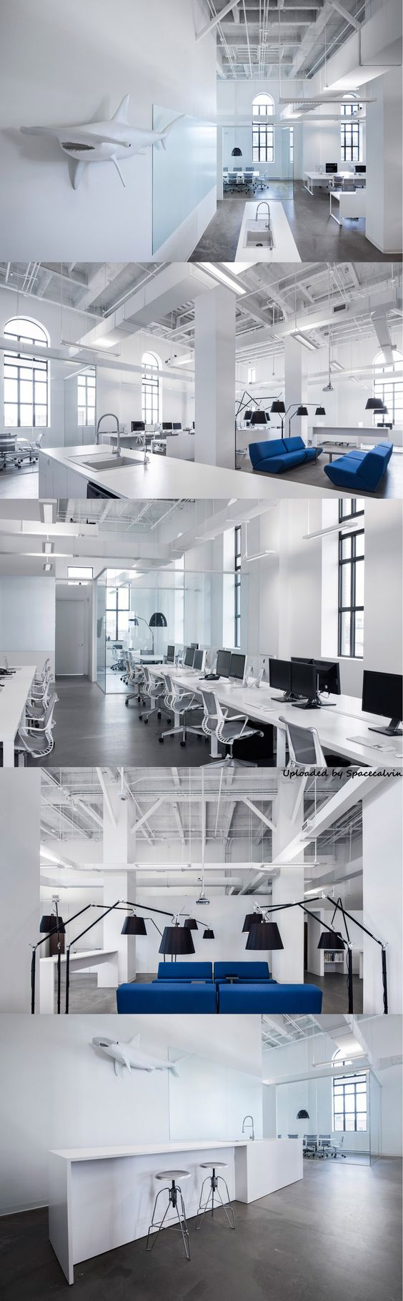 blue communications office space by jean guy chabauty anne sophie goneau blue white office space