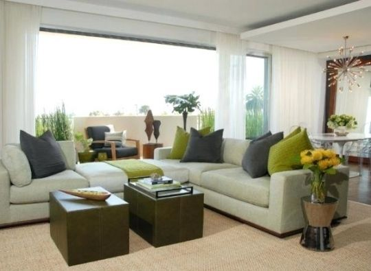 Green Living Room Accessories Transitional Living Rooms
