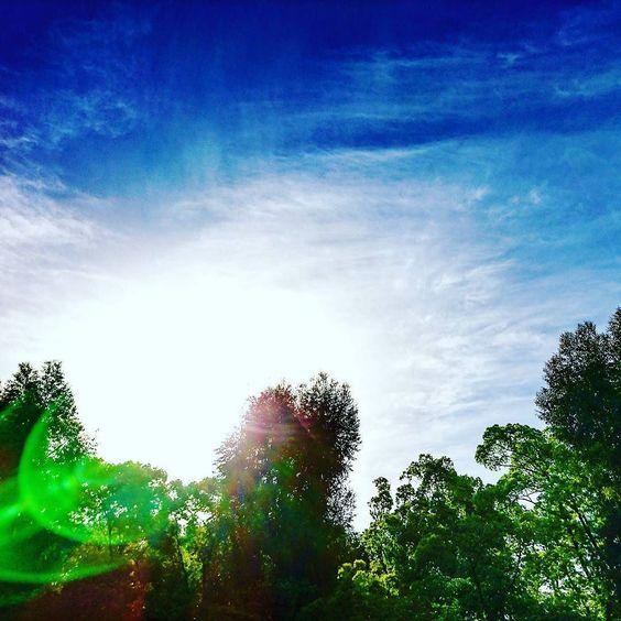 walk_around  #morning  #sky  #blue walk_around  #morning  #sky  #blue