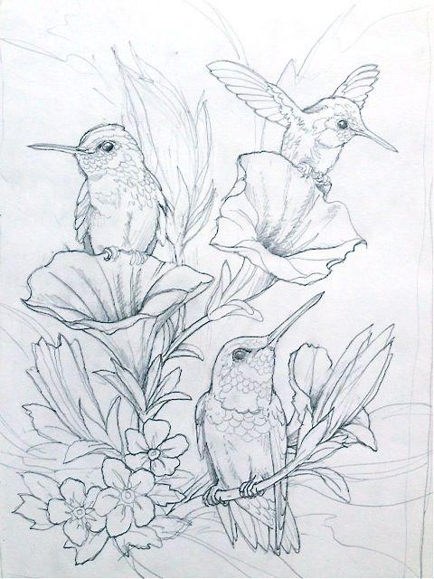 Bergsman Ausmalbilder Zeichnung Vogel Zeichnen