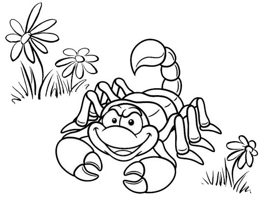 Pin By Pengadaan Indonesia On Scorpion Coloring Pages Coloring Pages Animal Coloring Pages Coloring Pages For Kids