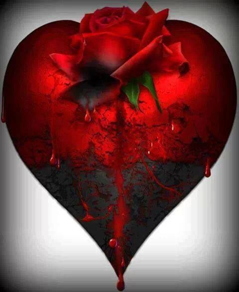Red Rose Dripping Over Heart ... ~