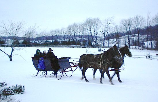 It may not be winter, but you can still take a ride on some of Guggisberg Swiss Inn's horses for a fun adventure! CLICK HERE for more on the Guggisberg Swiss Inn at www.OACountry.com! #Amish #Guggisberg #Horses #Ohio