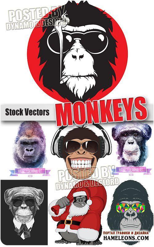 Креативные обезьяны - Векторный клипарт | Monkey vector | панели ...